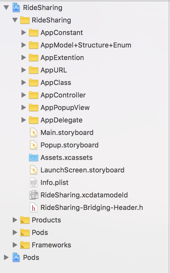 ios project structure setup